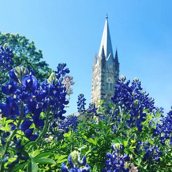 Flowered church